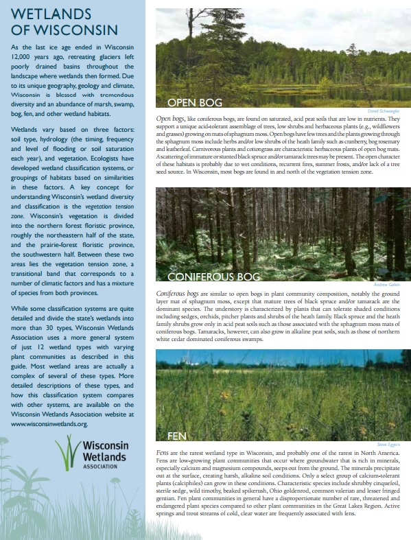 Wisconsin's Wetland Types guide cover