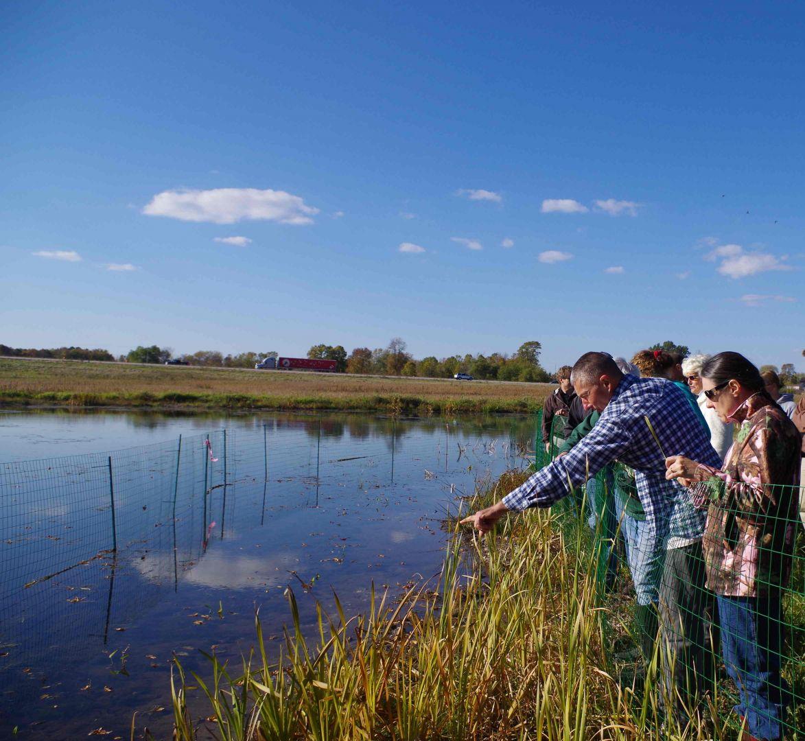 Group looking at water during wetland workshop