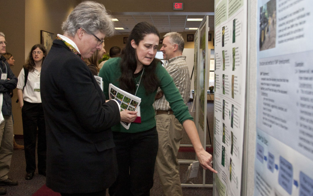 People looking at wetland science poster