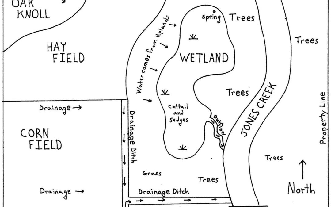 A map of a wetland.