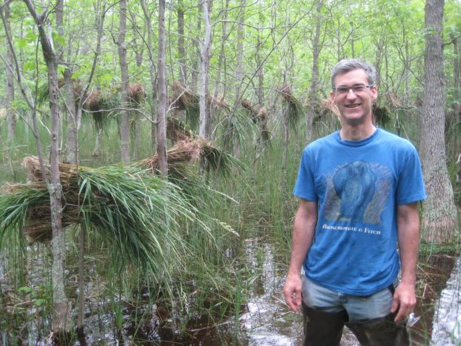 A wetland landowner poses with invasive reed canary grass that has been removed from his wetland.