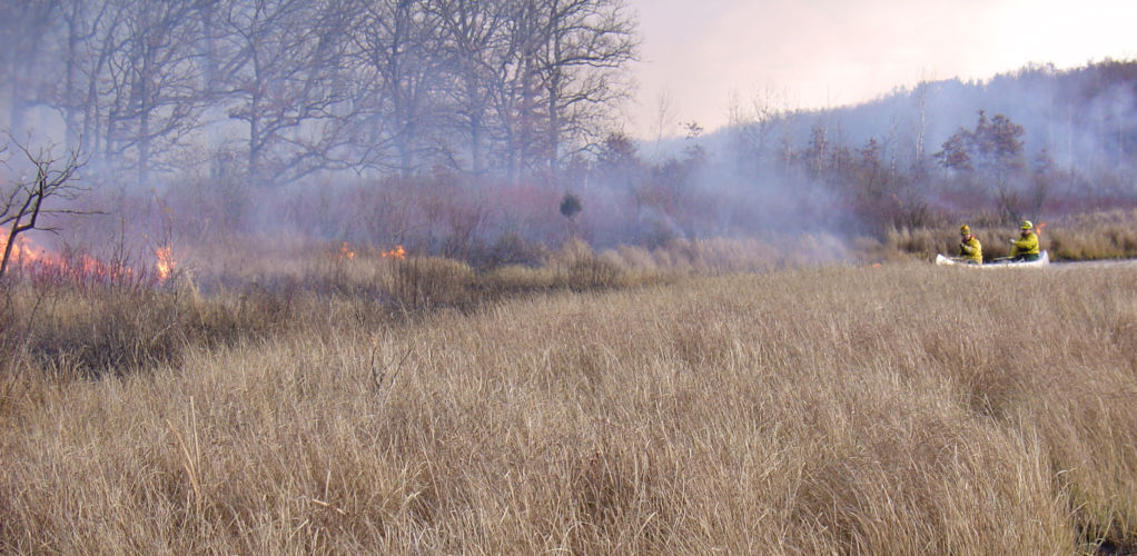 The USFWS conducts a prescribed burn in a marsh.