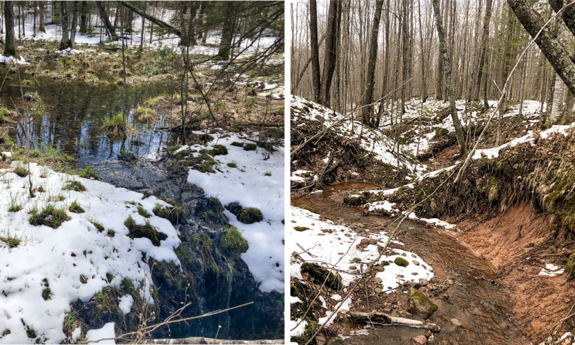 Examples of how gully erosion can drain an ephemeral pond (left—drainage flow evident where snow is melted in foreground) and degraded stream channels can increase flow and erosion (right).