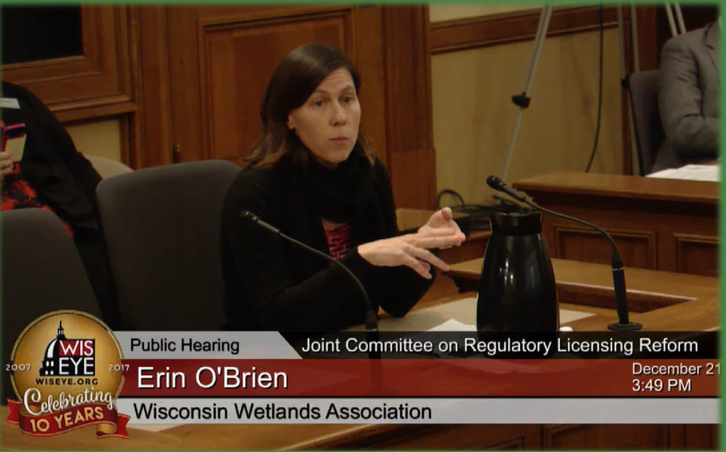 Erin O'Brien, WWA's current Policy Programs Director, testifying at a hearing.