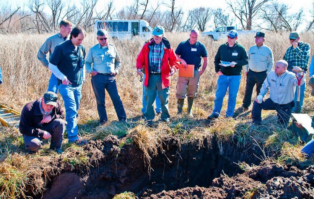 A group of wetland professionals in the field.