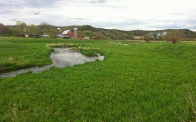 Can wetlands and farms go together?