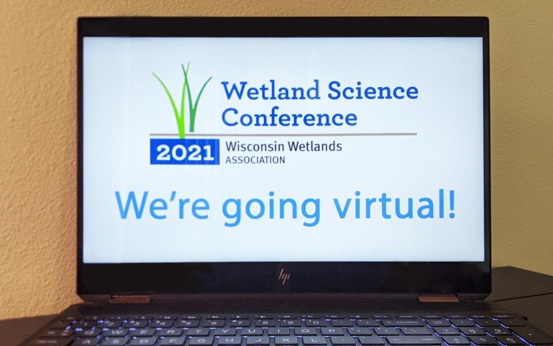 Conference announcement: Wetlands go virtual!
