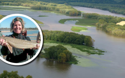 Wetland Coffee Break: Managing water levels for wetland health on the Upper Mississippi River