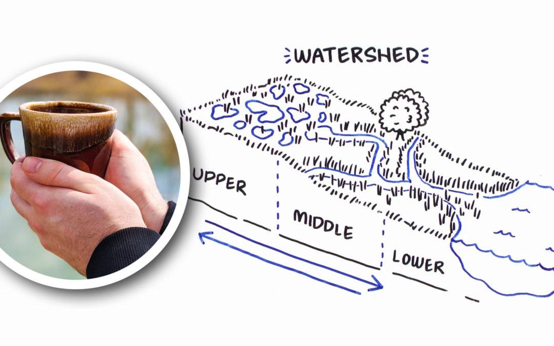 Wetland Coffee Break: Wetland hydrology 101