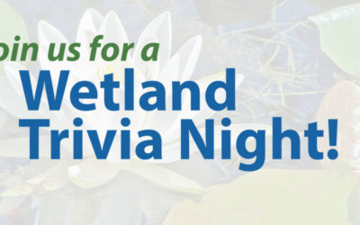 WWA's 2021 Annual Membership Meeting and Wetland Trivia Night