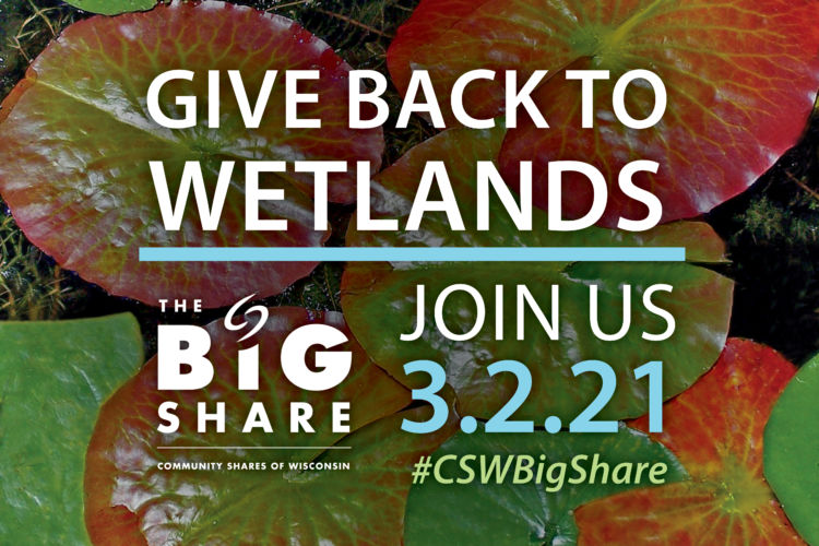 The Big Share 2021: Give back to wetlands!